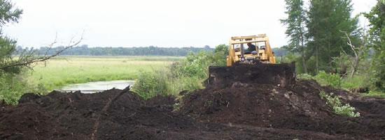 Fox River Wetland Restoration Activity