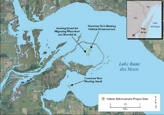 Common Tern Nesting Habitat Map