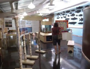 Wild Rose Fish Hatchery Exhibit
