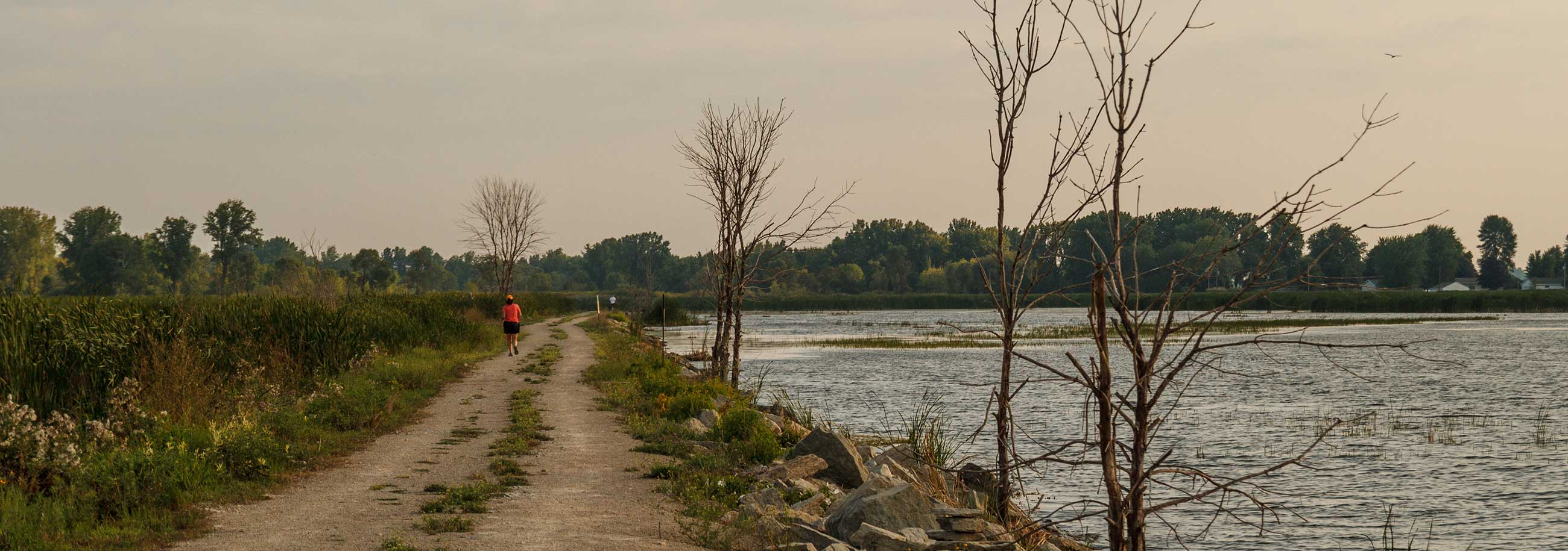 Wisconsin Trail Near Water from Fox River Trustee Council